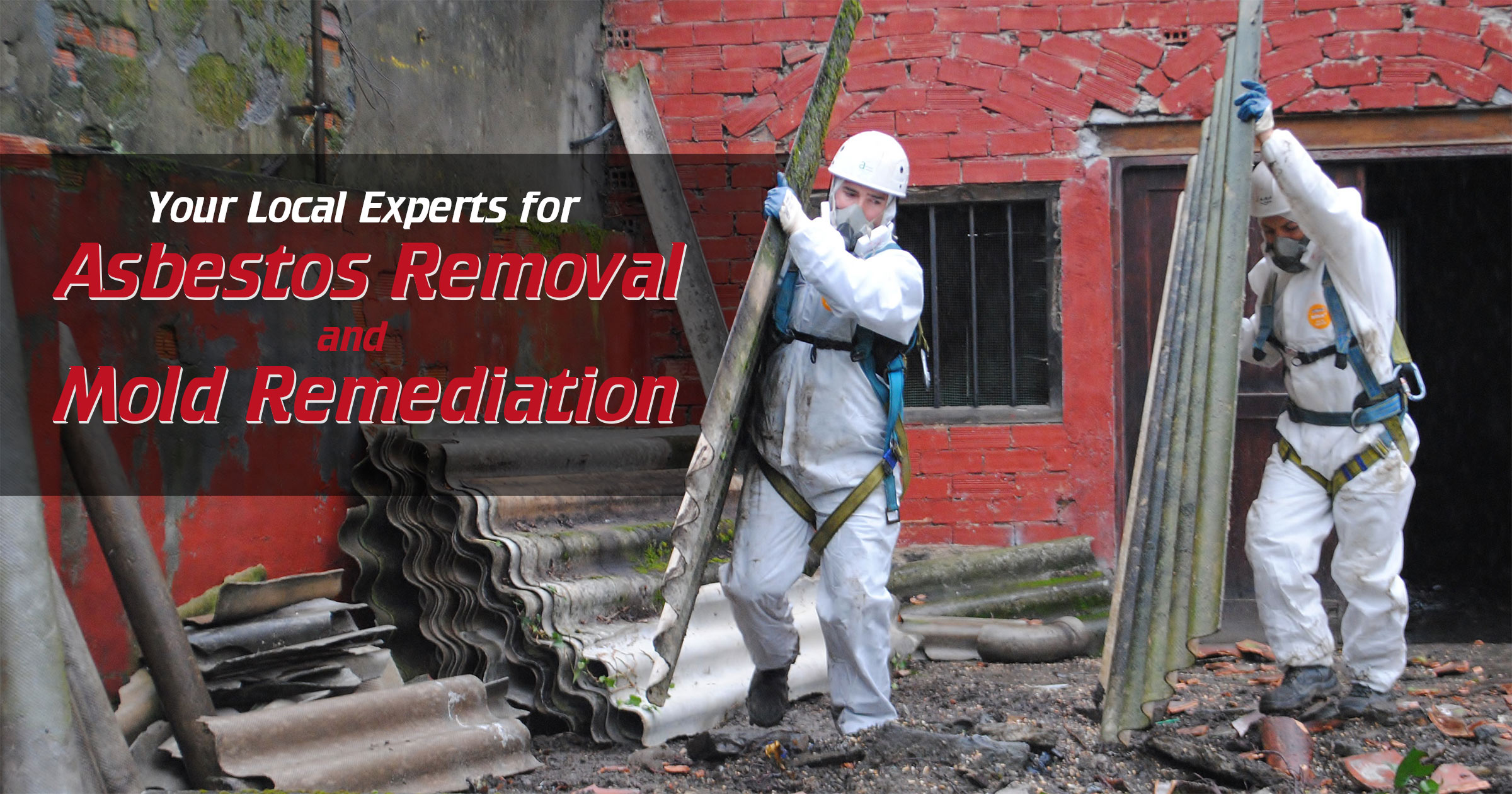 Your Local Experts for Asbestos Removal and Mold Remediation