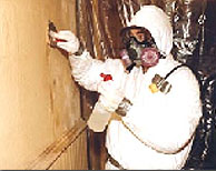 asbestos-abatement